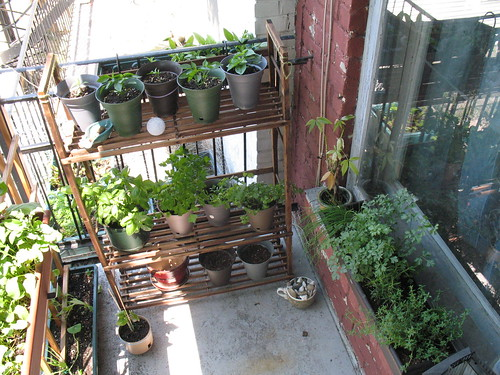 Five ways to beautiful and productive balcony gardens for Balcony vertical garden