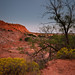 Moonlighting at Caprock Canyons State Park