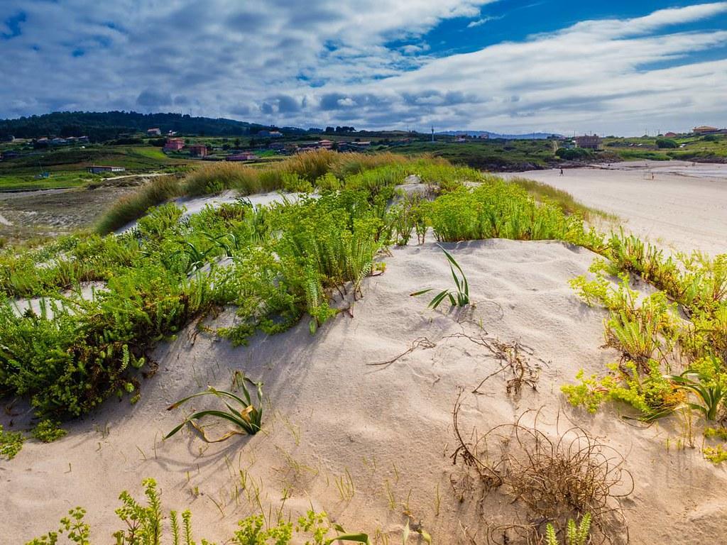 Beach in Galifornia. #arteixo #Coruña #olympusomdem10markii #photography #summer2017