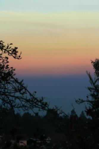 blue sunset red orange india black tree canon twilight silhoutte tamil tamilnadu coimbatore kovai 1000d