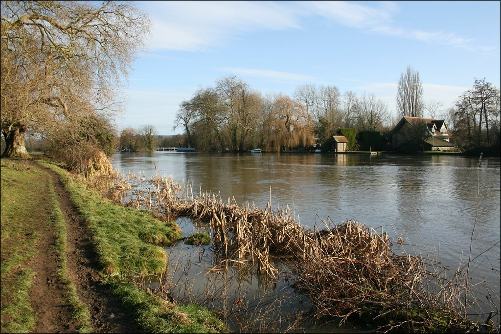 The Thames at Shiplake