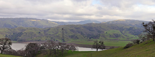 california panorama bird nest eagle baldeagle pylon stitched johnk calaverasroad calaverasreservoir d5000 johnkrzesinski randomok