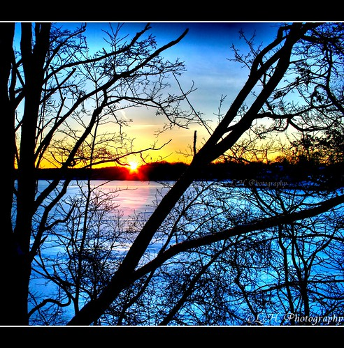 new blue trees winter sunset england orange lake ice nature yellow gold scenic