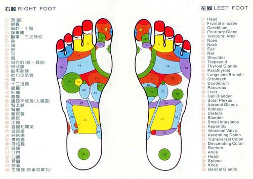 腳底反射區