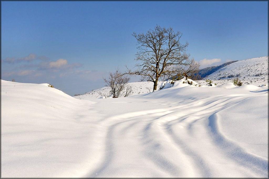 Sulle tracce di .... Bianca-neve