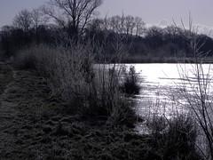 Natur  2010