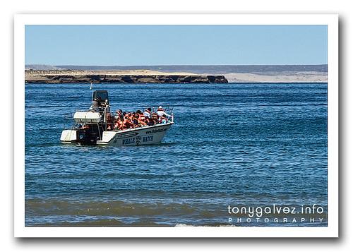 Puerto Pirámides, Península Valdés, Argentina