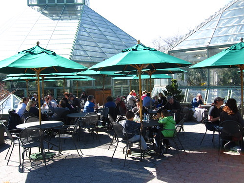 The Terrace Café