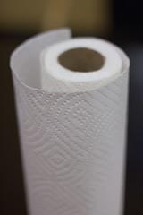 textile(0.0), label(0.0), plastic wrap(0.0), vase(0.0), thread(0.0), ceramic(0.0), lighting(0.0), household paper product(1.0), white(1.0), paper(1.0),