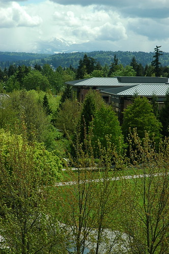 Redwest campus, Microsoft Building Red West D, view from Red West A, trees, clouds, Redmond, Washington, USA by Wonderlane