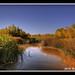 Las Vegas Wetlands Vern's Pond by Björn Burton
