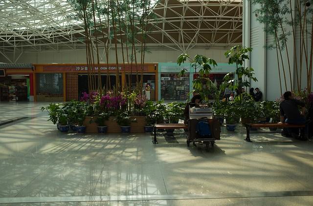 青岛飞机场