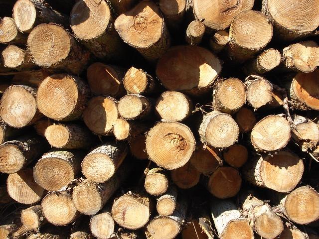 Logs - http://www.flickr.com/photos/crawshawt/4636162605/