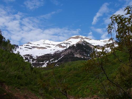 The Cascade Mountain summit ridge. The summit is the lower looking peak on the left.