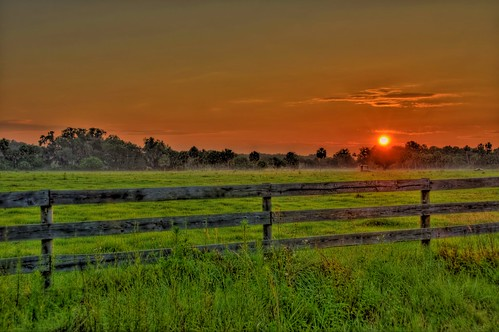 morning field grass fog clouds sunrise fence nikon florida farm pasture spanishmoss hdr highdynamicrange d300 grazingland photomatix manateecounty jonathansabin