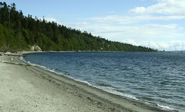 Whidbey Island Beach Whale Watching