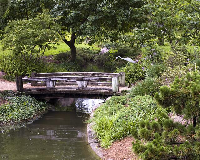 Japanese Garden Hermann Park Houston Flickr Photo