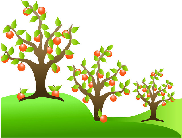 Clip Art Illustration of Orange Trees in an Orchard ...