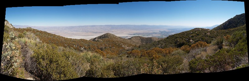 Panorama view from high on the Skyline Trail