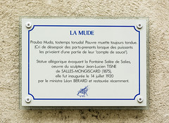 Photo of White plaque number 43352