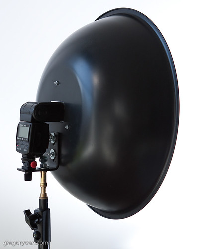 DIY Beauty Dish-3