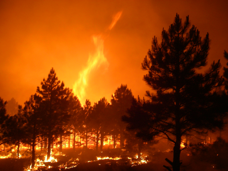 Natural Disasters Medium Term Plan Ks
