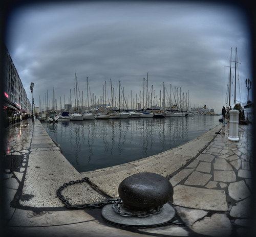 fisheye port