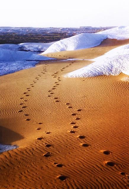 Trail into The White Desert