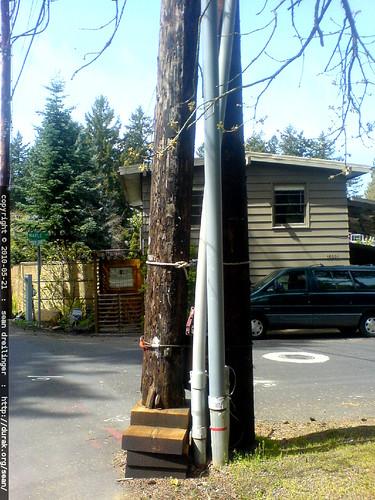 crazy telephone pole   DSC03340
