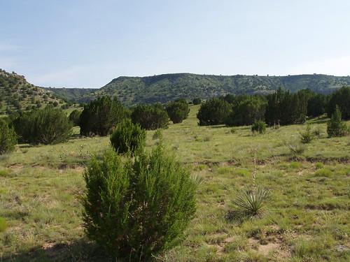 The desert around Black Mesa.