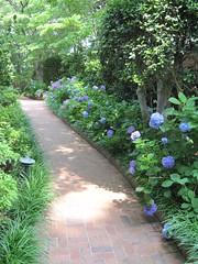 Elsong Gardens 4
