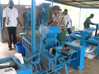 Fabricated cassava processing machines | by IITA Image Library