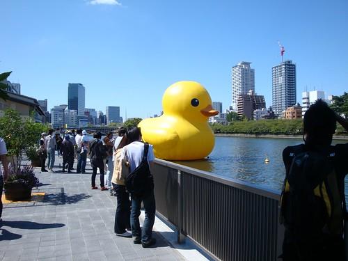 20090919_Rubber Duck Project  @Osaka_006