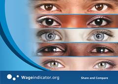 vision care, brown, eyelash, eyelash extensions, close-up, eyebrow, blue, eye, organ,