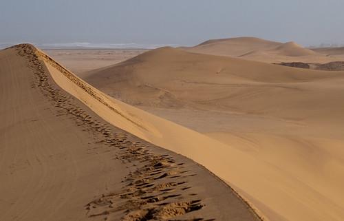 africa sand dune namibia swakopmund skeletoncoast erongoregion q9099562
