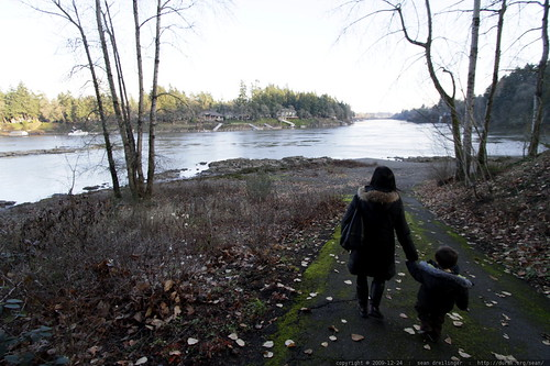 escorting grandma to the banks of the willamette river