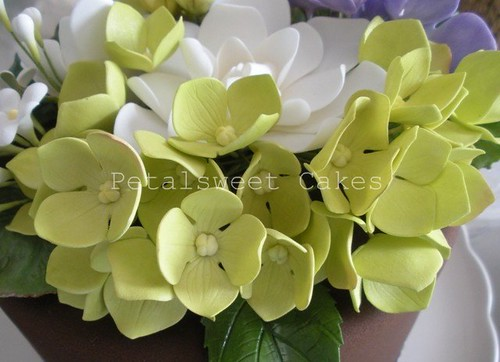 Hydrangea Tutorial Part One by Petalsweet Cakes