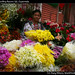 Woman selling flowers (a), Guatemala