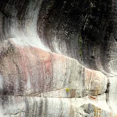 Franz Josef Glacier & vicinity