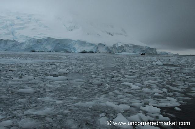 Ice Floes Along Hanusse Bay - Antarctica