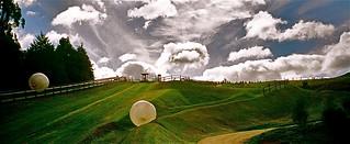 Zorb Rotorua görüntü. newzealand rotorua zorb