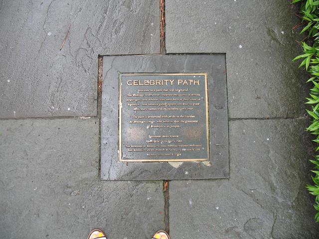 Celebrity Path. Photo by Medi Blum.