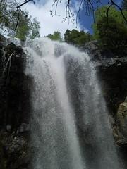 Hidden spring waterfall treasure in free fall