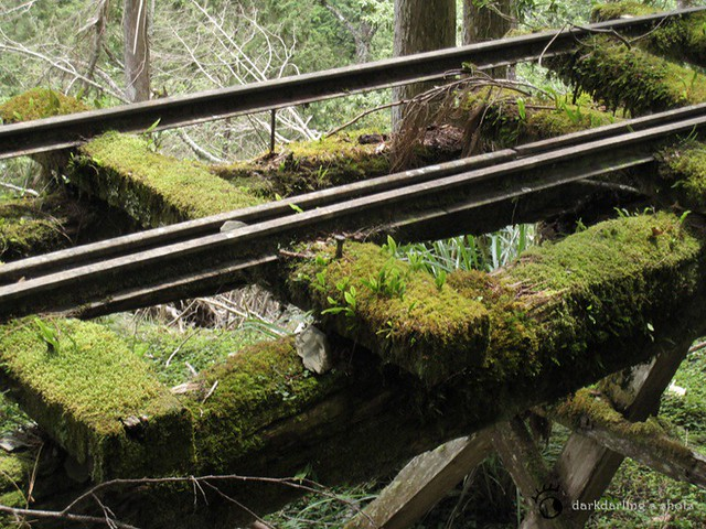 太平山小火车轨道 | flickr – 相片分享!