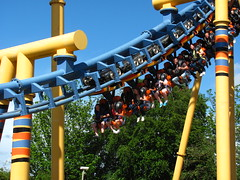 Flamingo Land 233
