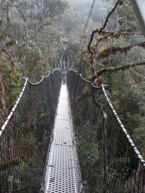 Best Manu National Park Tours