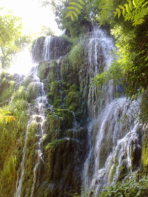 Jardines naturales de agua.
