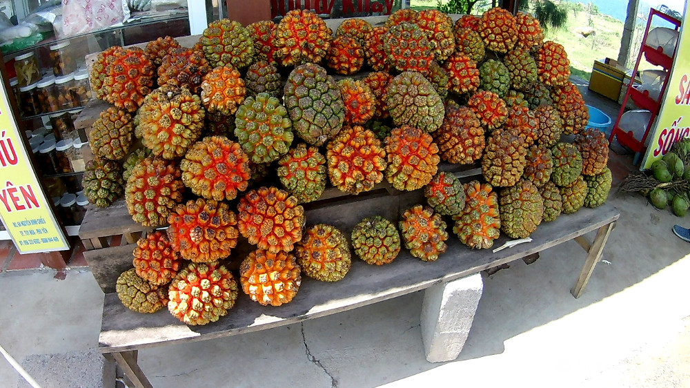 Vietnamese fruit