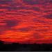 Manila Sunset by Womble67
