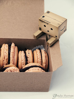 Danbo Reaches for Macarons